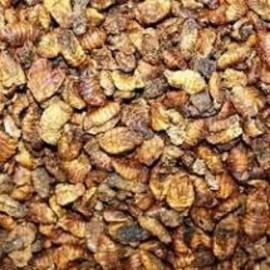 Crevettes séchées, vers à soie et vers de farine
